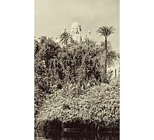 On The Banks Of The Nile Photographic Print