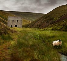 Tin Mine, Tomintoul by Gary Murison