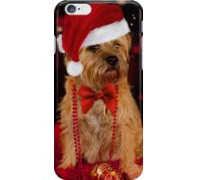 Border Terrier Dog in Christmas Santa Hat iPhone Case/Skin