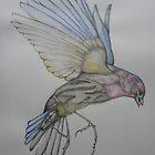 Flying bird by KarenJI1962