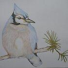 Blue Bird by KarenJI1962
