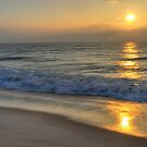 Delmarva Sunrise by Monte Morton