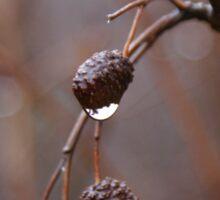 Winter rain Sticker