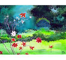 Garden 1 Photographic Print