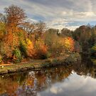 Autumn In Durham by Great North Views
