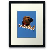 squirrel! Framed Print