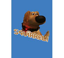 squirrel! Photographic Print