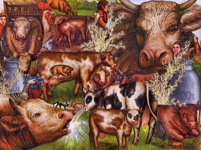 The Friendly Cow by Pamela Phelps