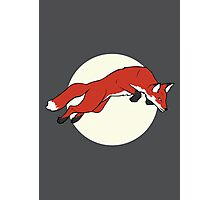 Night Fox Flies over the Moon Photographic Print