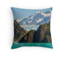 Tracy Arm Throw Pillow