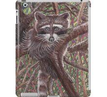 The Lazy Little Raccoon iPad Case/Skin