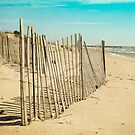The fence by SylviaCook