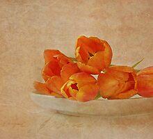spring menu by lucyliu
