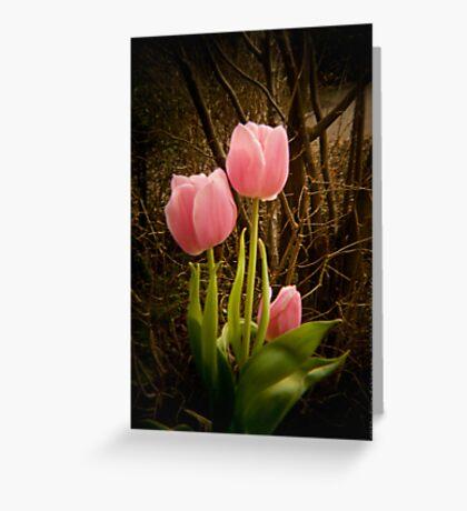 Pink Tulips VRS2 Greeting Card