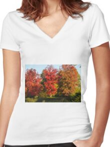 tree in the park in autumn Women's Fitted V-Neck T-Shirt