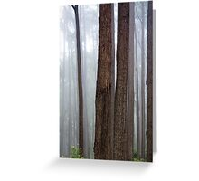 Forest Composition North of Cape Conran Greeting Card