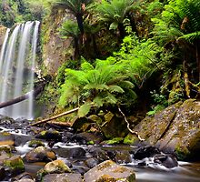 Early Morning at Hopetoun Falls. by Julie  White