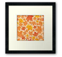 Shade Of Autumn  Framed Print