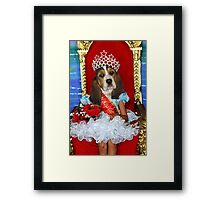 Basset beauties & Tiaras Framed Print