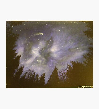 Night in the forrest Photographic Print