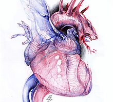 Dragon Heart by Morphology