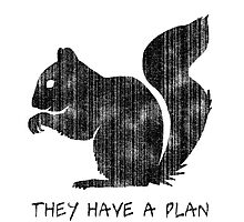 Squirrels: They Have A Plan Photographic Print