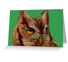 Portrait of an Eastern Screech Owl Greeting Card