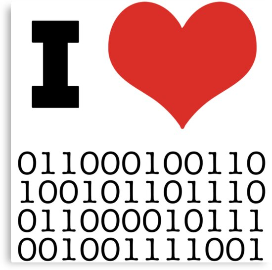 I Heart Binary by RedPine