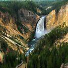 Grand Canyon of Yellowstone by JamesA1