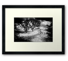 The Journey  B&W Variation - Cootamundra,NSW - The HDR Experience Framed Print