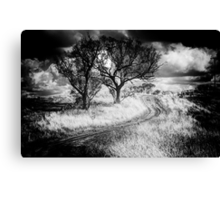 The Journey  B&W Variation - Cootamundra,NSW - The HDR Experience Canvas Print