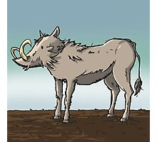 Lonely Warthog Photographic Print