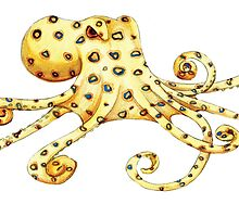 Blue-Ringed Octopus by Hannah-Hitchman