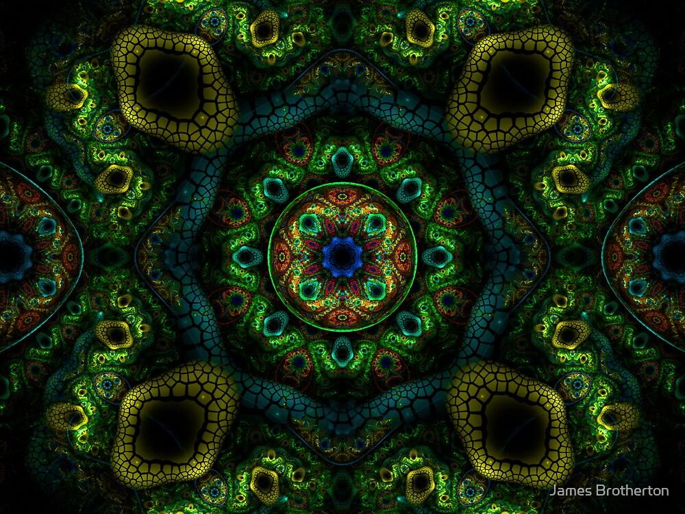 Native Visions by James Brotherton