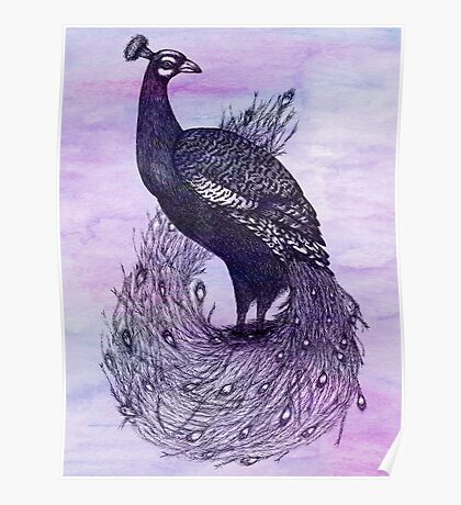 Long Tailed Peacock with watercolour background Poster