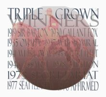Vintage Triple Crown Winners by Ginny Luttrell