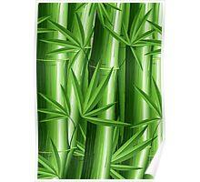 Bamboo Jungle Zen Poster