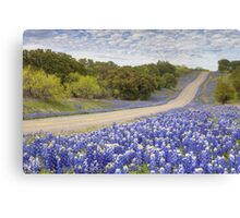 Texas Bluebonnet Highway in the Texas Hill Country Canvas Print
