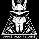 The Secret Rabbit Society by stieven