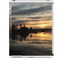 Mirrored calm iPad Case/Skin
