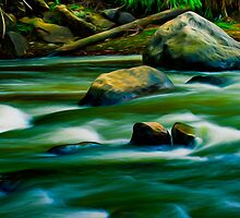 Flowing by Paul Wolf