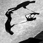 Doggone Shadows .. by Berns