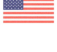 American flag, stars & stripes - faded by TOM HILL - Designer