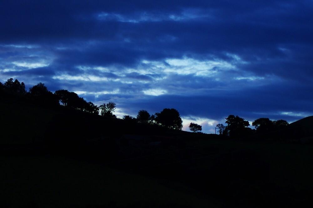 Trees at dusk by Lugburtz