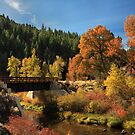 Susan River Bridge On The Bizz 2 by James Eddy