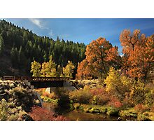 Susan River Bridge On The Bizz 2 Photographic Print