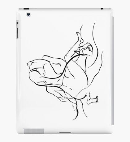 two iPad Case/Skin
