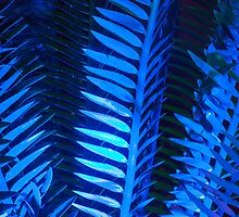 Blue Frond Abstract by Neelrad