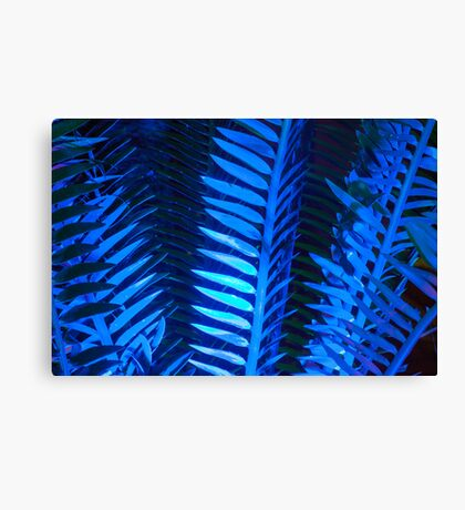 Blue Frond Abstract Canvas Print