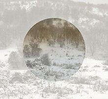 Snowing Forest by by-jwp